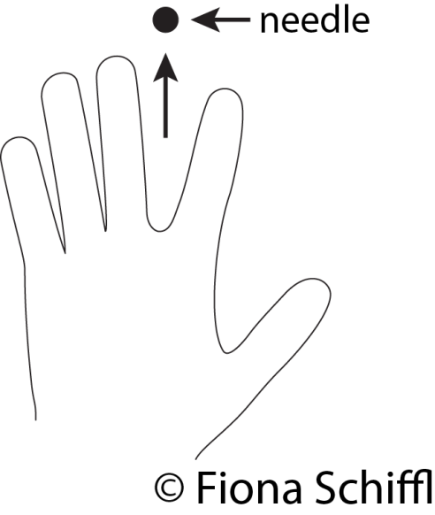 walking-foot-fiona-schiffl-correct-hand-position