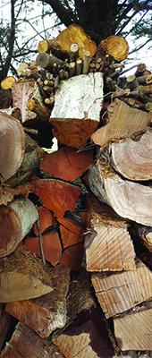 firewood-defying-gravity-fiona-schiffl