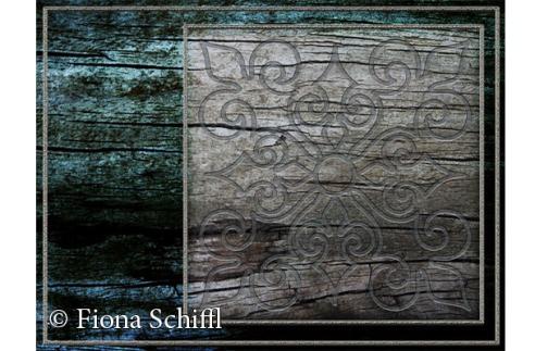 fiona-schiffl-wood-engraving-2015