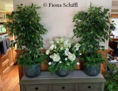 Flowers and trees Fiona Schiffl