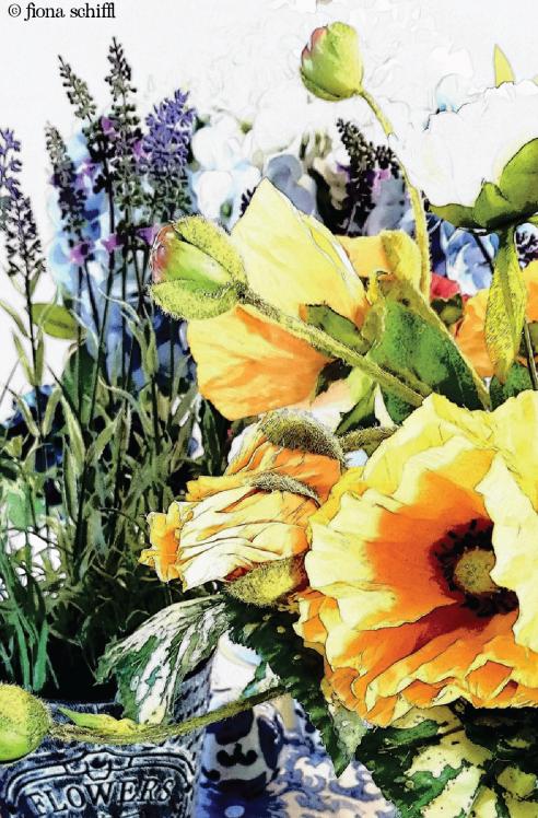 Flowers Fiona Schiffl